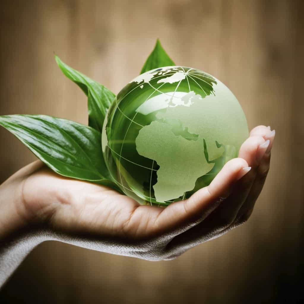 glass globe in hand green bio - Stock Image