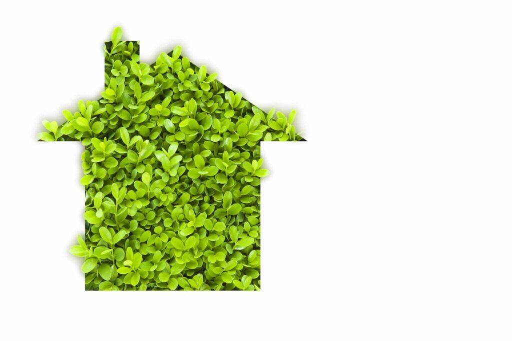 Eco House iStock 000012839637 Medium 1024x682 - INCREASING YOUR PROPERTY VALUE