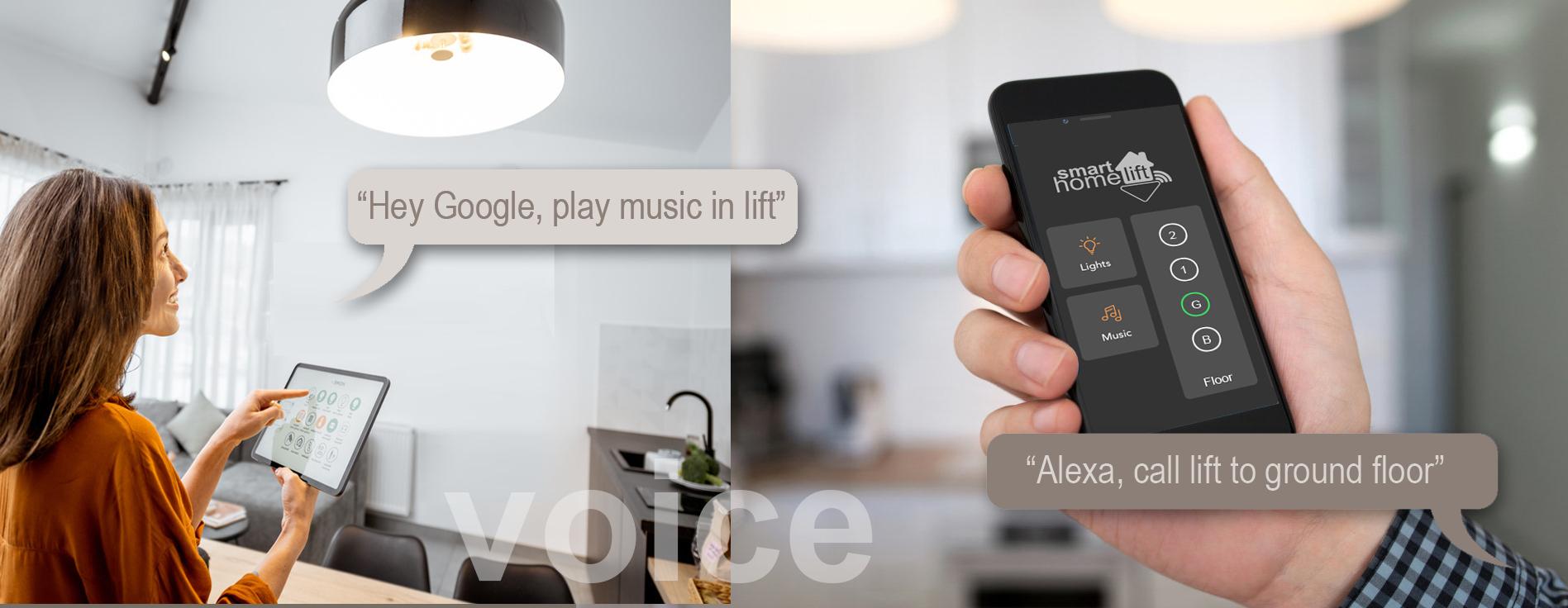 Voice recognition 3 - Smart Home Lift